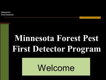 Minnesota First Detectors Minnesota Forest Pest First Detector Program Welcome.