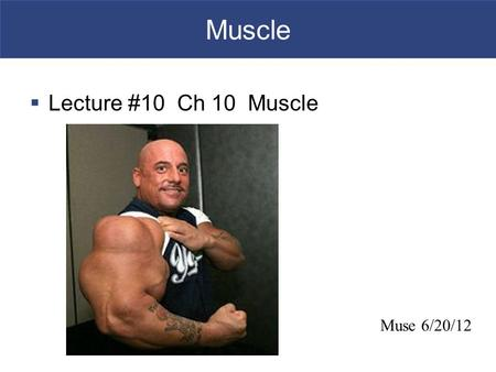 Muscle  Lecture #10 Ch 10 Muscle Muse 6/20/12. An Introduction to Muscle Tissue  Muscle Tissue  A primary tissue type, divided into  Skeletal muscle.