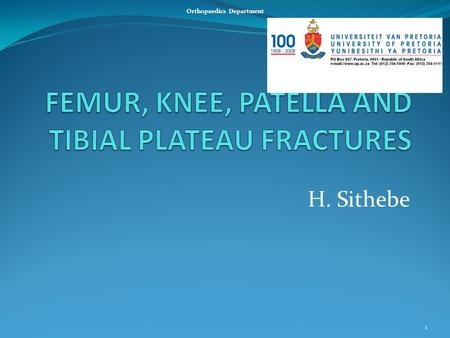 H. Sithebe 1 Orthopaedics Department. FEMUR FRACTURES Femur Head Femur Neck Intertrochanteric Subtrochanteric Shaft Supracondylar Condylar 2.