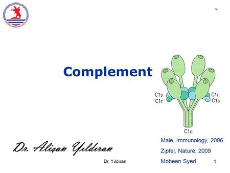 Complement Male, Immunology, 2006 Zipfel, Nature, 2009 Mobeen Syed ب Dr. Yıldıran1.