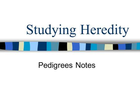 Studying Heredity Pedigrees Notes. What is a pedigree? 1. A pedigree is a diagram of family relationships that uses symbols to represent people and lines.