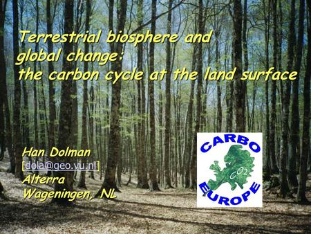 Terrestrial biosphere and global change: the carbon cycle at the land surface Han Dolman [  Wageningen, NL.