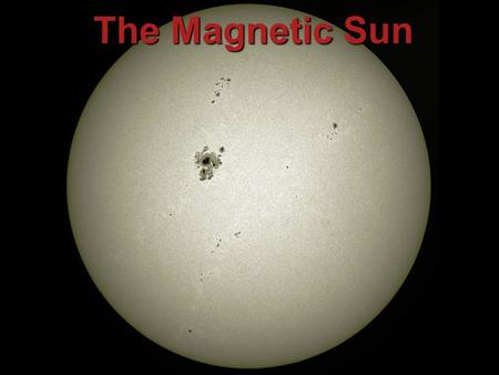 The Magnetic Sun 1. What is the Sun? The Sun is a Star, but seen close-up. The Sun is giant ball of very hot, mostly ionized hydrogen gas that shines.