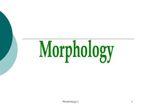 Morphology 11. 2 Morphology is the field within linguistics that studies the internal structure of words. linguistics.