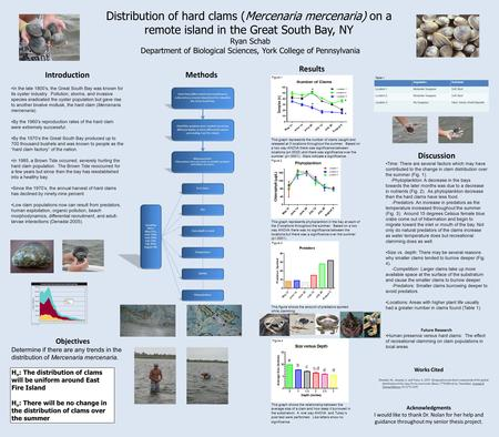 Distribution of hard clams (Mercenaria mercenaria) on a remote island in the Great South Bay, NY Ryan Schab Department of Biological Sciences, York College.