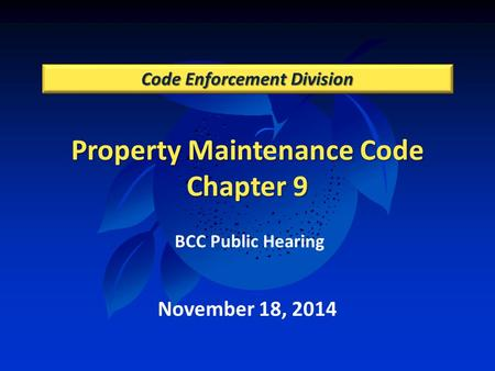 Property Maintenance Code Chapter 9 Code Enforcement Division November 18, 2014 BCC Public Hearing.