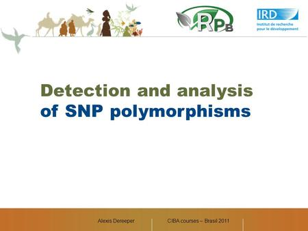 Alexis DereeperCIBA courses – Brasil 2011 Detection and analysis of SNP polymorphisms.