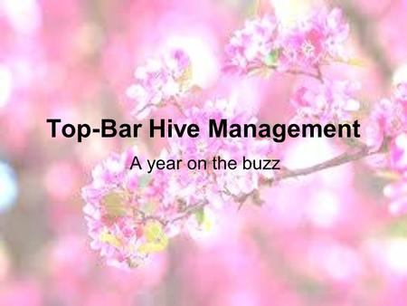 Top-Bar Hive Management A year on the buzz. SPRING! Expansion – spacers Swarm season.