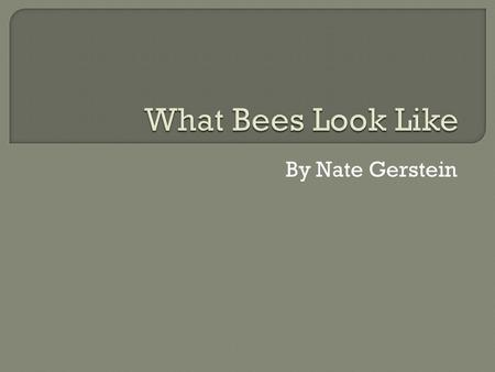 By Nate Gerstein. People should not kill bees because bees make flowers and people will die without flowers. People are killing bees because a yellow.