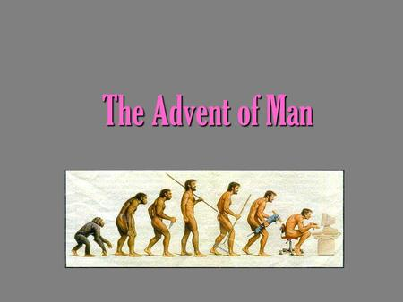"The Advent of Man. The Beginning of Mankind Australopithecus afarensis – ""Lucy"" This group of hominids lived 5 and a half million years ago in east Africa."