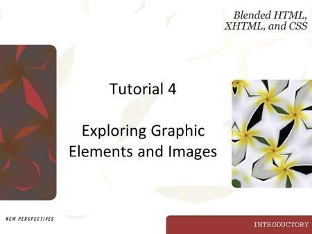 INTRODUCTORY Tutorial 4 Exploring Graphic Elements and Images.