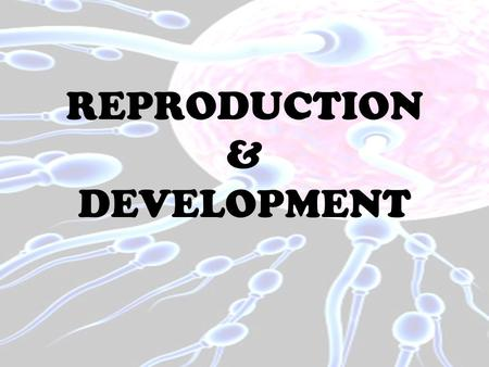 REPRODUCTION & DEVELOPMENT. A METHOD OF REPRODUCTIONIN WHICH ALL GENES PASSED ON TO THE OFFSPRING COME FROM A SINGLE INDIVIDUAL OR PARENT.