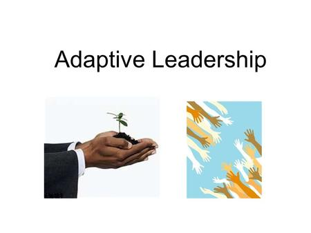 Adaptive Leadership. Authorities Basic Functions –Direction –Protection –Orientation to role and to place –Control of conflict –Maintenance of norms.