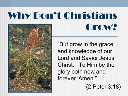 "Why Don't Christians Grow? ""But grow in the grace and knowledge of our Lord and Savior Jesus Christ. To Him be the glory both now and forever. Amen."" (2."