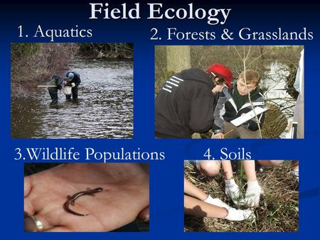 Field Ecology 1. Aquatics 2. Forests & Grasslands 4. Soils3.Wildlife Populations.
