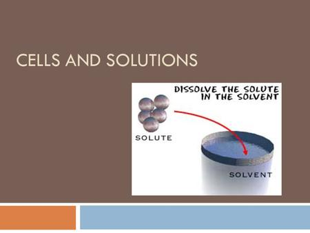 CELLS AND SOLUTIONS. Cells are solutions  A solution is a combination of any 2 + substances.  In cells, particles are in an aqueous (water) solution.