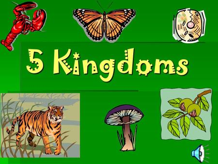 5 Kingdoms Moneran  One celled  No separate nucleus  Example: bacteria.