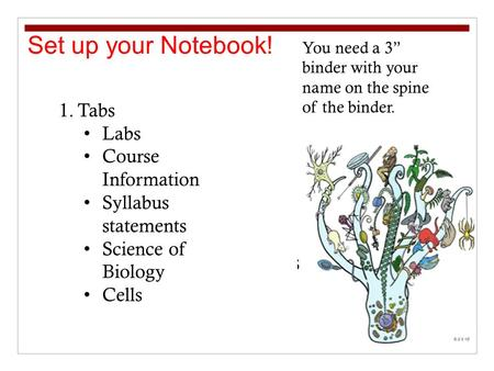 "Set up your Notebook! 1.Tabs Labs Course Information Syllabus statements Science of Biology Cells You need a 3"" binder with your name on the spine of the."