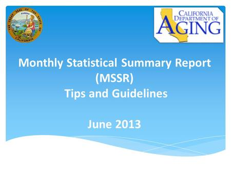 Monthly Statistical Summary Report (MSSR) Tips and Guidelines June 2013.