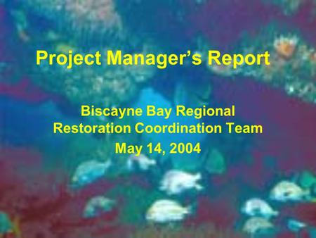 Project Manager's Report Biscayne Bay Regional Restoration Coordination Team May 14, 2004.