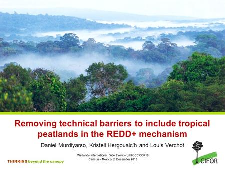 THINKING beyond the canopy Removing technical barriers to include tropical peatlands in the REDD+ mechanism Daniel Murdiyarso, Kristell Hergoualc'h and.