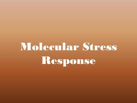 Molecular Stress Response. Categories within Protective and Protected Processes Plant Growth Regulation Environmental Change Gene Expression Signal Transduction.