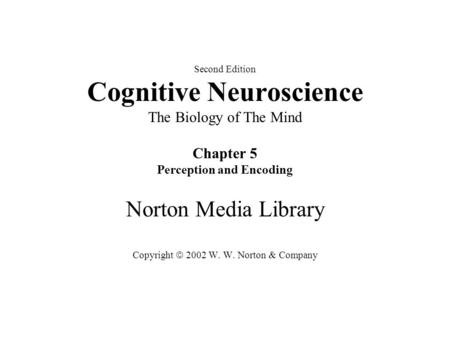 Second Edition Cognitive Neuroscience The Biology of The Mind Chapter 5 Perception and Encoding Norton Media Library Copyright  2002 W. W. Norton & Company.