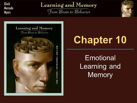 Chapter 10 Emotional Learning and Memory. 10.2 Brain Substrates.