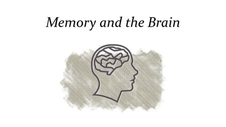 Memory and the Brain Processing……….. Shallow processing- encoding on a basic level based on the structure or appearance of words Deep processing- encoding.