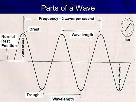 Parts of a Wave Crest Wavelength Trough Normal Rest Position Frequency = 2 waves per second.