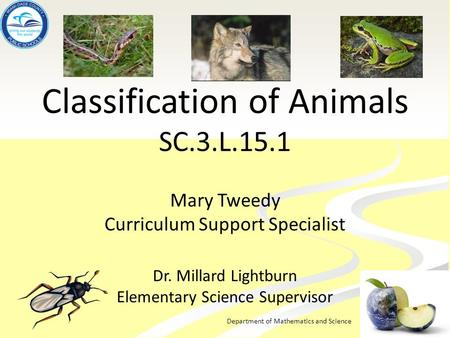 Department of Mathematics and Science Classification of Animals SC.3.L.15.1 Mary Tweedy Curriculum Support Specialist Dr. Millard Lightburn Elementary.