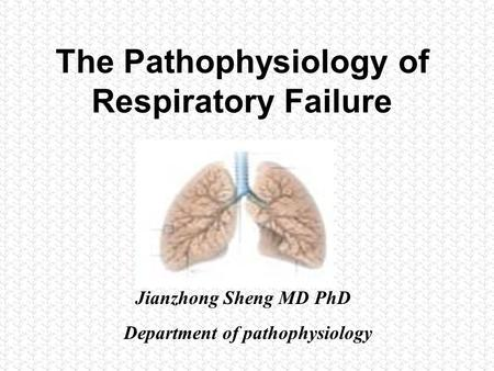 万用卡 The Pathophysiology of Respiratory Failure Department of pathophysiology Jianzhong Sheng MD PhD.