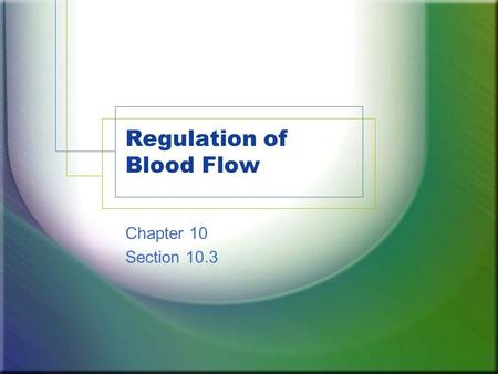 Regulation of Blood Flow Chapter 10 Section 10.3.