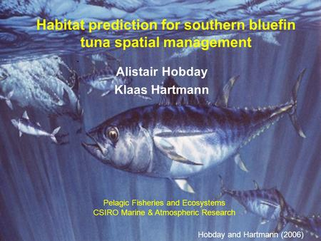 Habitat prediction for southern bluefin tuna spatial management Alistair Hobday Klaas Hartmann Hobday and Hartmann (2006) Pelagic Fisheries and Ecosystems.