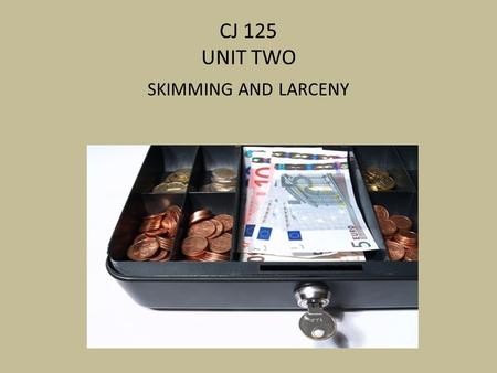 CJ 125 UNIT TWO SKIMMING AND LARCENY. REVIEW THREE MAJOR CATEGORIES OF FRAUD WHAT ARE THEY?