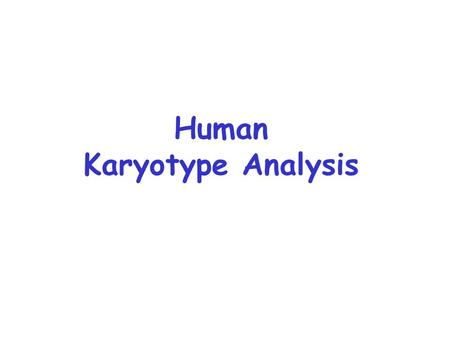 Human Karyotype Analysis. Down Syndrome: 47, +21 1 in 600-700 births epicanthic fold of skin over corner of each eye wide, flattened skull protruding,