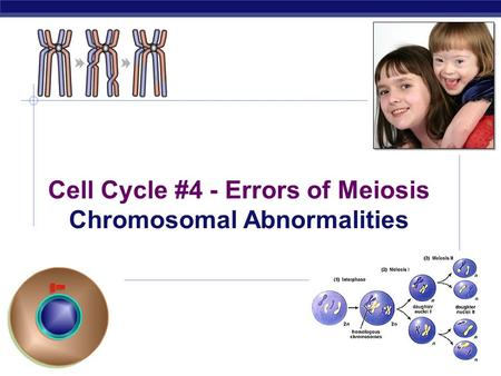 2006-2007 Cell Cycle #4 - Errors of Meiosis Chromosomal Abnormalities.