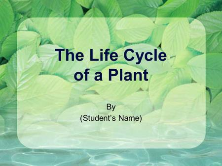 The Life Cycle of a Plant By (Student's Name). Contents Stage 1: Growth Stage 2: Survival Stage 3: Reproduction Citations: Sources of Information.