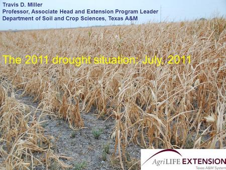 Travis D. Miller Department of Soil and Crop Sciences Texas AgriLife Extension Service The 2011 drought situation: July, 2011 Travis D. Miller Professor,