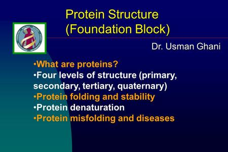 Protein Structure (Foundation Block) What are proteins? Four levels of structure (primary, secondary, tertiary, quaternary) Protein folding and stability.