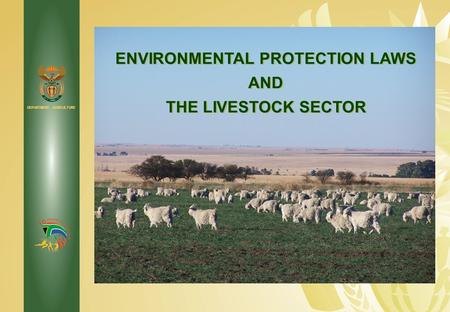 the environmental concerns of the livestock industry Other environmental concerns of cattle using by-products of the ethanol industry to replace corn as cattle feed decreases this document is an302.