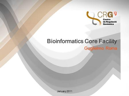 Bioinformatics Core Facility Guglielmo Roma January 2011.