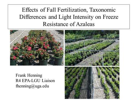 Effects of Fall Fertilization, Taxonomic Differences and Light Intensity on Freeze Resistance of Azaleas Frank Henning R4 EPA-LGU Liaison