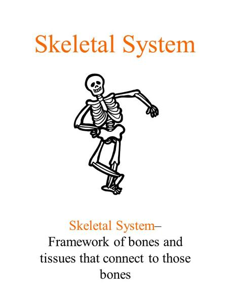 Skeletal System Skeletal System– Framework of bones and tissues that connect to those bones.
