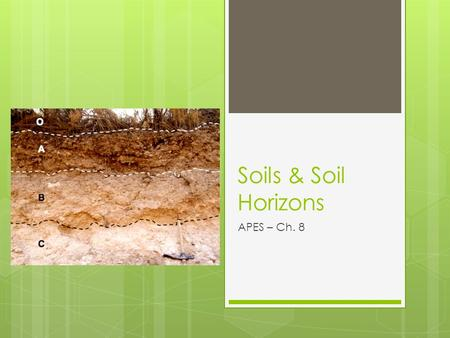 Soils & Soil Horizons APES – Ch. 8. Weathering of Minerals.