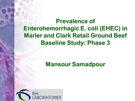 Prevalence of Enterohemorrhagic E. coli (EHEC) in Marler and Clark Retail Ground Beef Baseline Study: Phase 3 Mansour Samadpour.