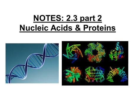 NOTES: 2.3 part 2 Nucleic Acids & Proteins. So far, we've covered… the following MACROMOLECULES: ● CARBOHYDRATES… ● LIPIDS… Let's review…