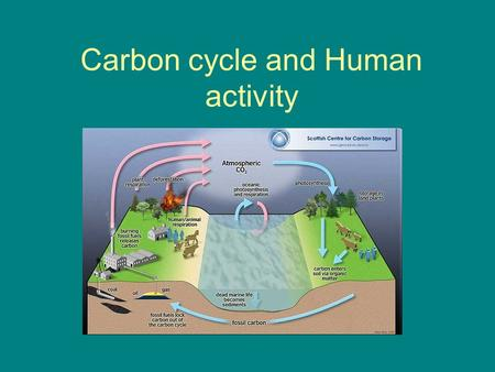 Carbon cycle and Human activity. Carbon cycle Carbon cycles though the atmosphere, living things, soils, and the ocean.Carbon cycles though the atmosphere,