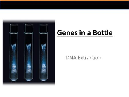 Genes in a Bottle DNA Extraction. Relevance of DNA isolation Isolation of DNA is often the first step before further analysis DNA profiling cloning disease.
