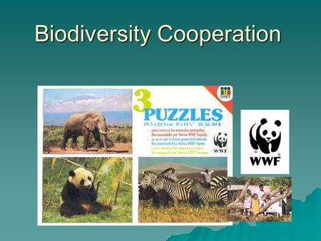 Biodiversity Cooperation. CITES * CITES (1973): Convention on International Trade in Endangered Species of Fauna and Flora *Regulates trade in living.